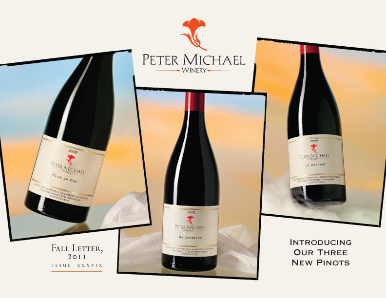Introducing Our Three New Pinots