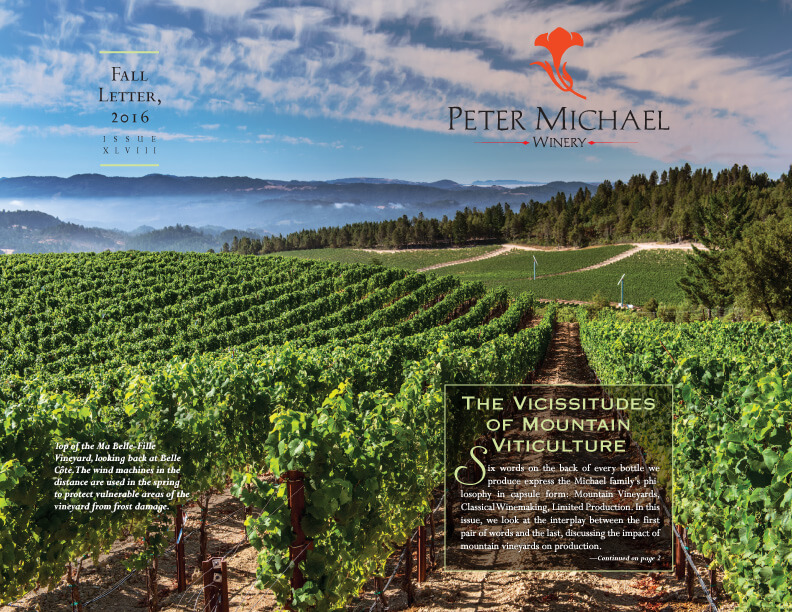 The Vicissitudes of Mountain Viticulture
